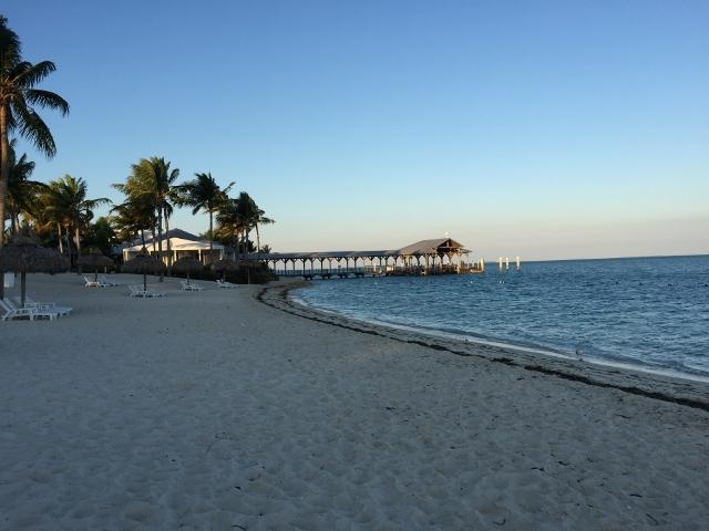 Eagle Tour Miami