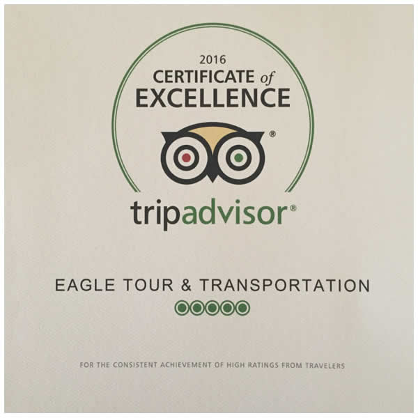 eagle - selo tripadvisor